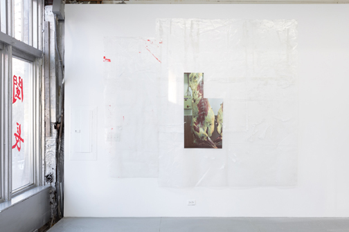 installation view of meat photo print on plastic