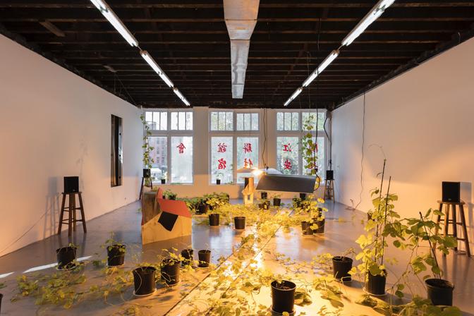 installation shot of kudzu growing under warm plant light and around wooden structures